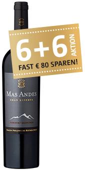 2 x 90 Punkte: Mas Andes Gran Reserva Valle Central 2017 nur 6,48 € statt 12,95 €